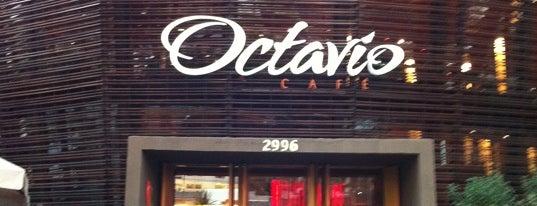 Octavio Café is one of Melhores Cafés de São Paulo.