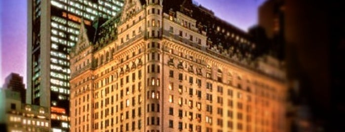 The Plaza Hotel is one of my favorite.