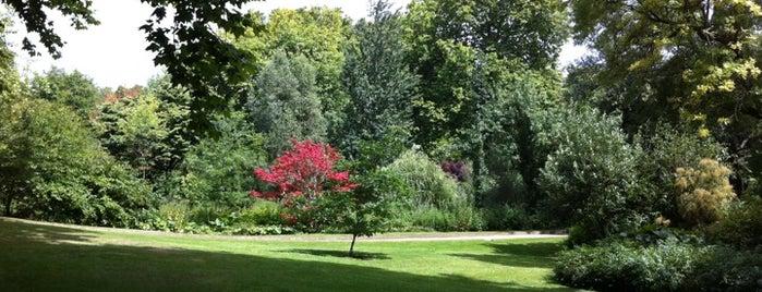 Jardines del Palacio de Buckingham is one of World Sites.