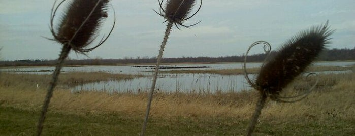 Iroquois National Wildlife Refuge is one of National Recreation Areas.