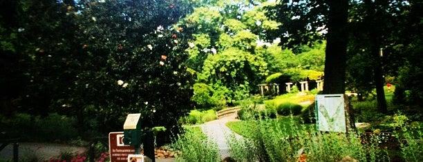 Greensboro Arboretum is one of Greensboro, NC.