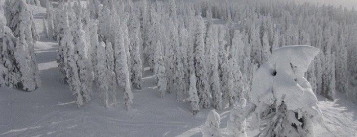 Big White Resort is one of BC Ski Resorts.
