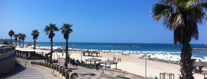 Bograshov Beach is one of Tel Aviv.