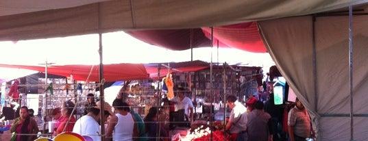 Tianguis La Normal (Domingo) is one of GDL.