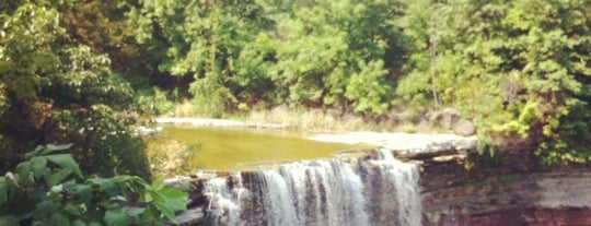 Ball's Falls Conservation Area & Centre For Conservation is one of Trails & Hikes.