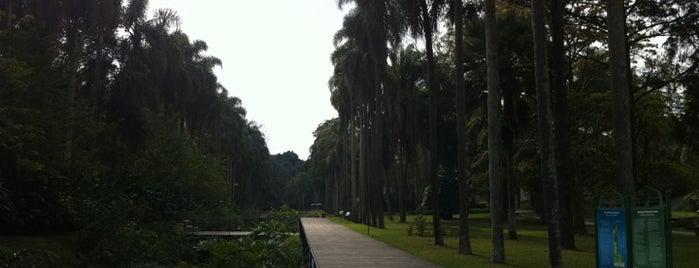 Jardim Botânico de São Paulo is one of em Sampa.