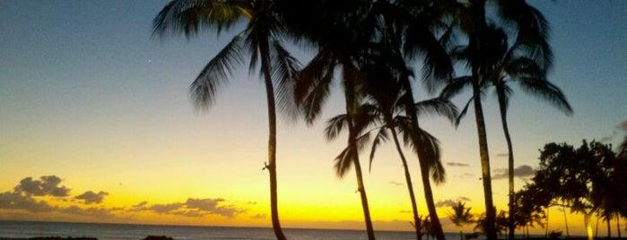 Ko Olina Resort is one of Darcyさんの保存済みスポット.