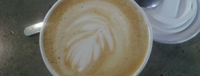 Independent Cafes and Coffee Shops in Tampa Bay