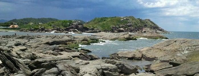 Praia de Itanhaém is one of Evandro: сохраненные места.