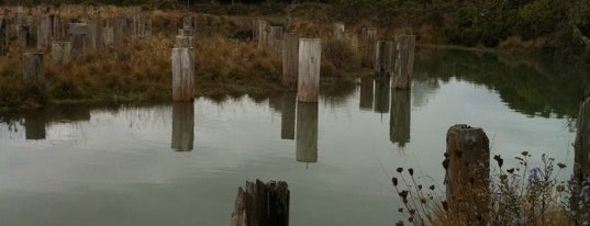 Arcata Marsh and Wildlife Sanctuary is one of Zoos/Aquariums in CA.