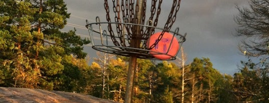 Meilahden frisbeegolfrata is one of Top Picks for Disc Golf Courses 2.