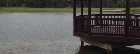 Carrying Place Golf and Country Club is one of Tempat yang Disimpan Deborah Lynn.