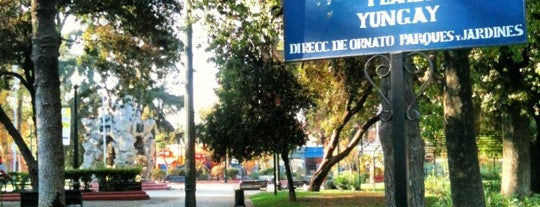 Plaza Yungay (Plaza del Roto Chileno) is one of Barrio Yungay.