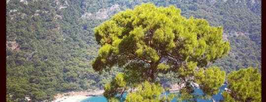 Kabak Koyu is one of Turkey Travel Guide.