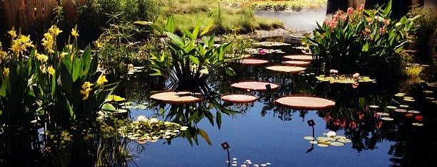 Denver Botanic Gardens is one of Outdoor Active Spaces.