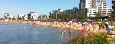Strand Nesselande is one of Andres: сохраненные места.
