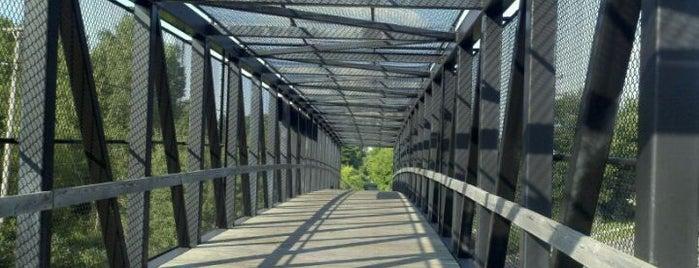 Rogue River Park - White Pine Trail State Park is one of Locais curtidos por jonas.