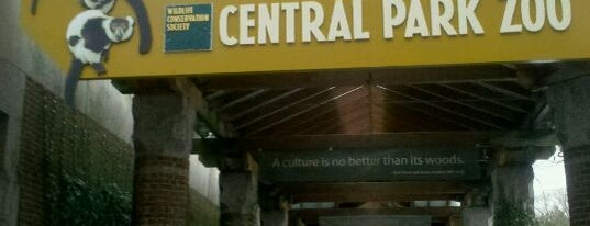 Central Park Zoo is one of Adult Camp!.