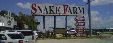 Snakefarm is one of Chad'ın Kaydettiği Mekanlar.