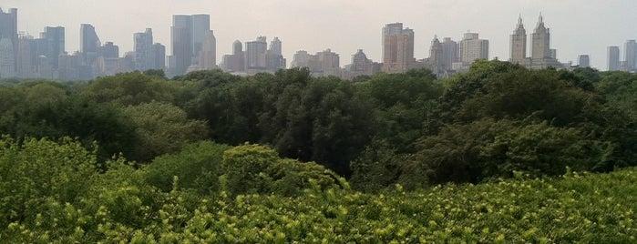 Iris & B Gerald Cantor Roof Garden is one of Rooftops in New York City.
