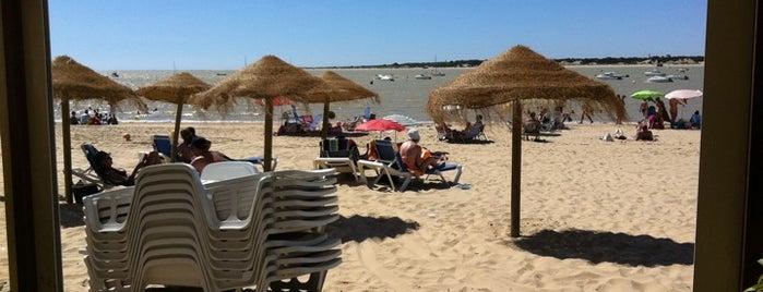Playa Bajo de guía is one of Costa ballena.