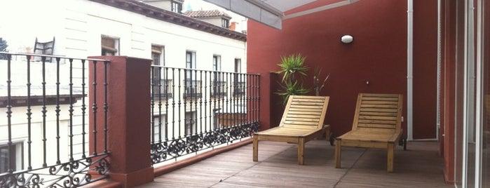 Charming rent apartments
