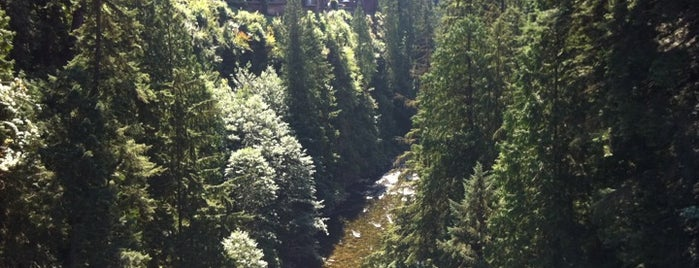 Capilano Suspension Bridge is one of Best of World Edition part 3.