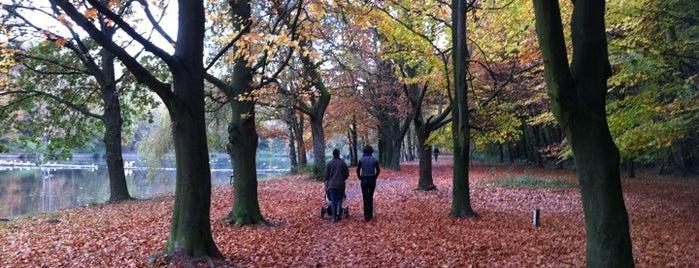 Bois des Bruyeres is one of Anthony : понравившиеся места.