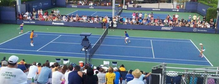 Court 4 - USTA Billie Jean King National Tennis Center is one of virgo.