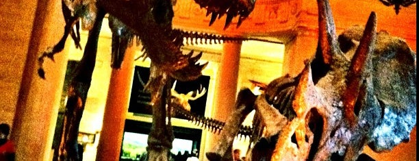 Natural History Museum of Los Angeles County is one of USA i Oktober.