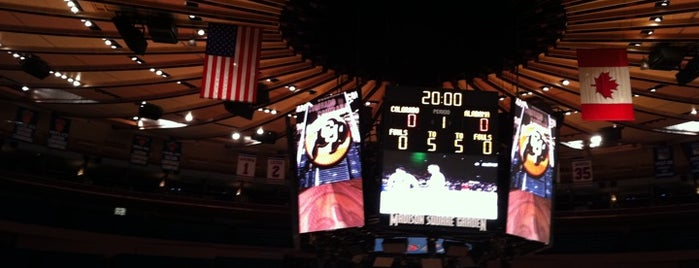 Madison Square Garden is one of My top New York spots.