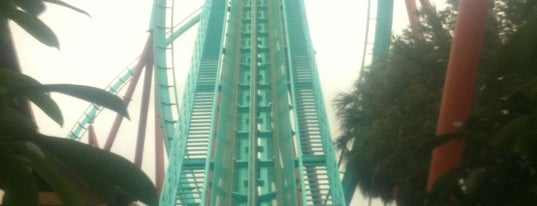 Kumba is one of Must Ride Roller Coasters.