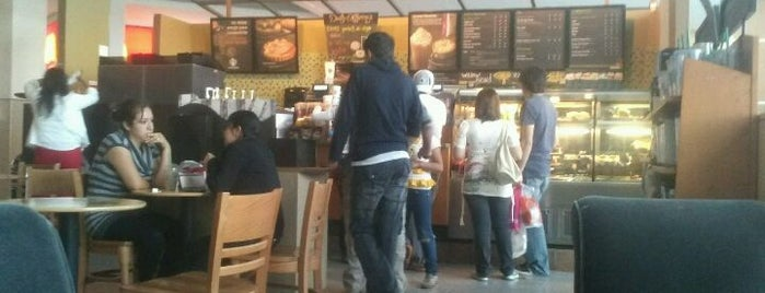 Starbucks is one of Cafés Pachuca.