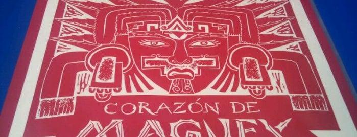 Corazón de Maguey is one of Vida Nocturna.