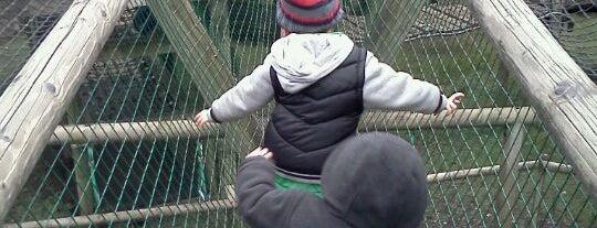 Adventure Playground is one of Lamya : понравившиеся места.