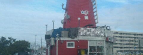 The Windmill Hot Dogs of West End, Long Branch is one of Things To Do In & Around Monmouth University.