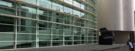 Museu d'Art Contemporani de Barcelona (MACBA) is one of Museus de Barcelona.