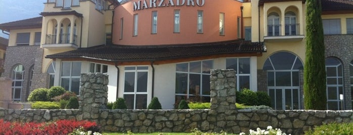 Distilleria Marzadro is one of Best Pubs & Lounge Bar.