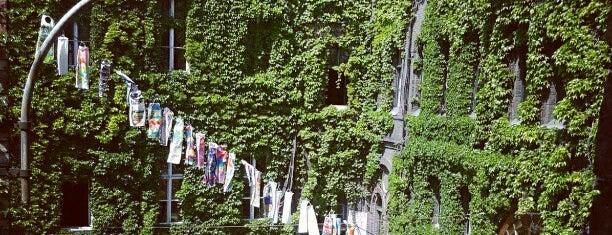 WUK is one of Guide to Wien's best spots.