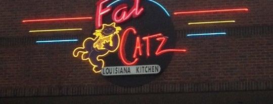 Fat Catz Louisiana Kitchen is one of AlmostVeggies.com: сохраненные места.