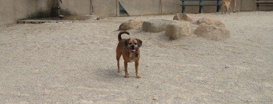 Carl Schurz Dog Run is one of บันทึกเดินทาง New York.