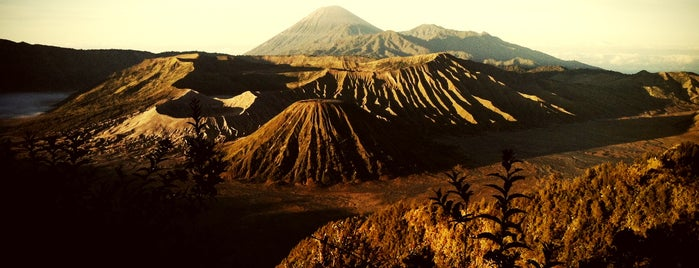 Bromo Sunrise View Point is one of Bromo Istimewa.