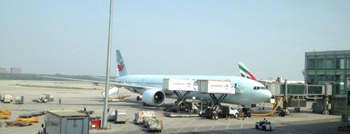 Beijing Capital International Airport (PEK) is one of AIRPORT.