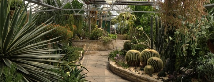 Allan Gardens Conservatory is one of Toronto.