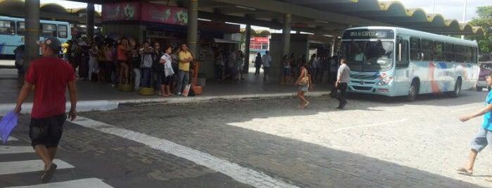 Terminal de Messejana is one of Locais.