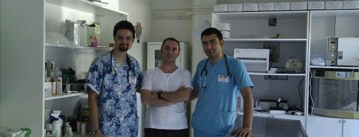 Dost Veteriner Klinigi is one of สถานที่ที่ Eser Ozan ถูกใจ.
