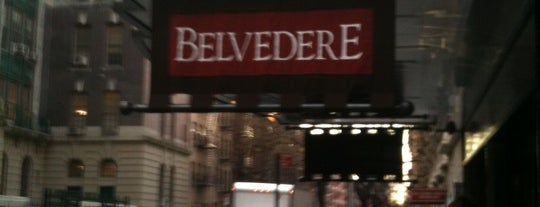 The Belvedere Hotel is one of NY2015.