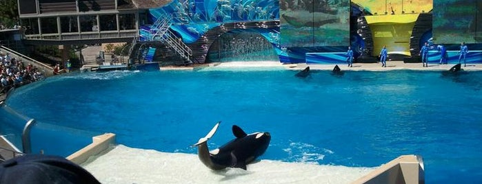 SeaWorld San Diego is one of Best Places to Check out in United States Pt 2.