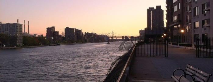Carl Schurz Park is one of NY To Do.