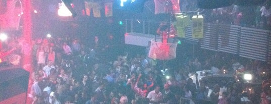 Mansion Nightclub is one of Best Miami Nightclubs.